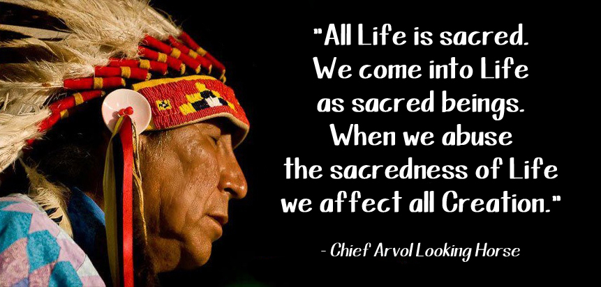 Chief Arvol Looking Horse quote
